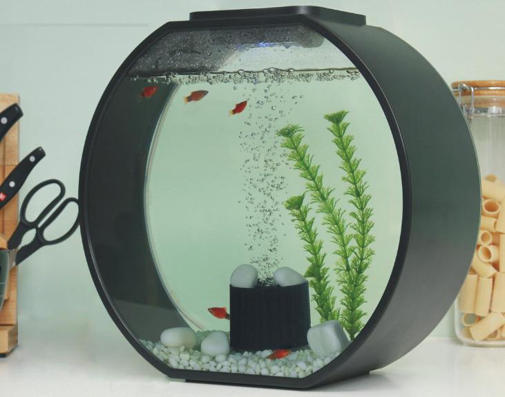 Deco o mini fish tank mj hub pte ltd for Mini fish tank