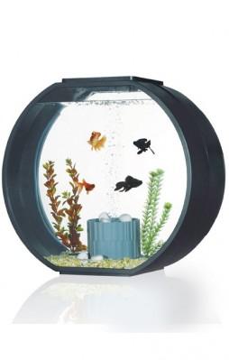 Deco O Fish Tank